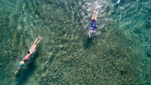 Birdseye view of two people swimming in the sea